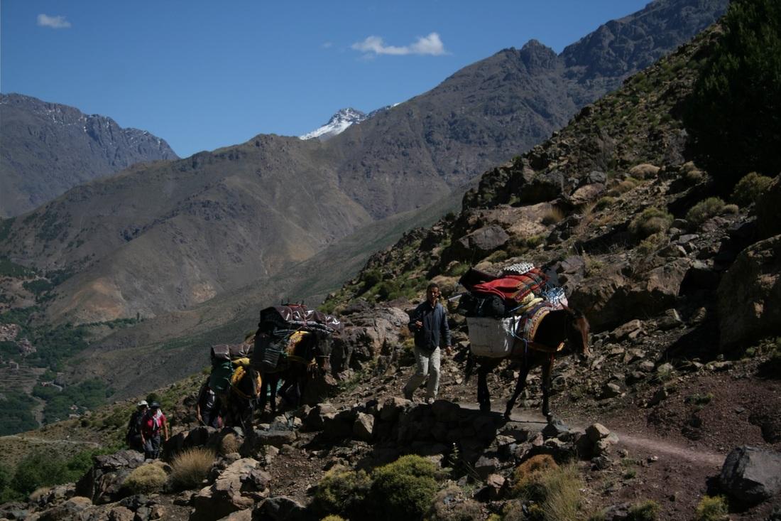 http://www.imlil-trekking.com